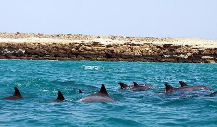 Île de Hengam